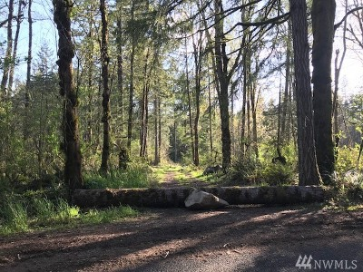Residential Lots & Land For Sale: 419 Wright Rd SE