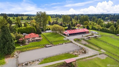 Maple Valley Single Family Home For Sale: 29258 SE 208th St