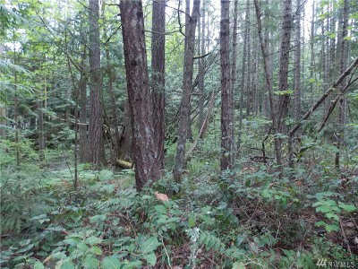 Yelm Residential Lots & Land For Sale: 18603 Woodside Dr SE