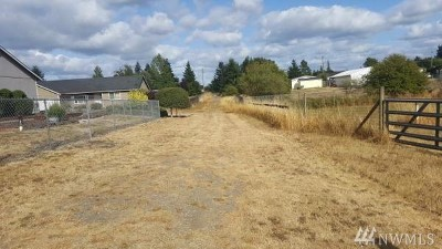 Rochester WA Single Family Home For Sale: $99,950