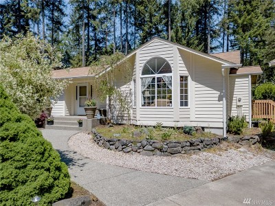 Gig Harbor Single Family Home For Sale: 14601 35th Ave NW