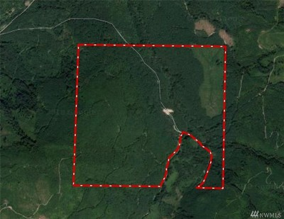 Residential Lots & Land For Sale: Blue Mt. Rd.