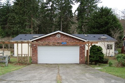 Langley Single Family Home For Sale: 3856 Passage View Lane