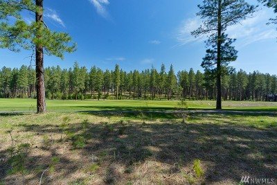 Residential Lots & Land For Sale: 1360 Coal Mine Wy