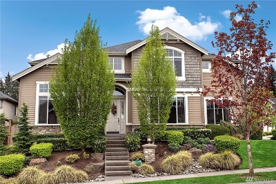 Bothell Single Family Home For Sale: 4323 220th St SE