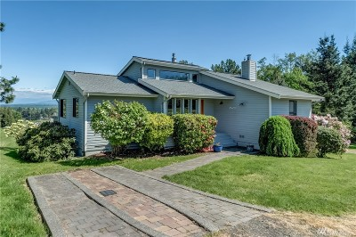 Ferndale Single Family Home Contingent: 2573 Mountain View Rd