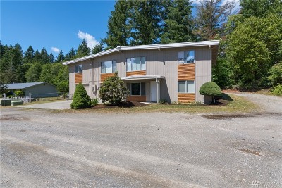 Gig Harbor Multi Family Home For Sale: 6413 149th St Ct NW