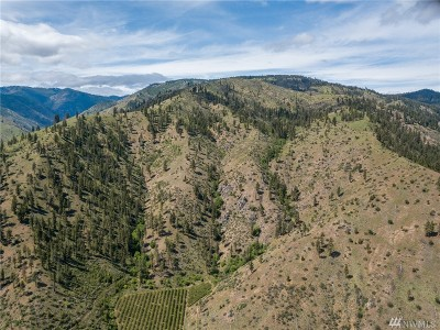 Chelan, Chelan Falls, Entiat, Manson, Brewster, Bridgeport, Orondo Residential Lots & Land For Sale: Entiat River Rd