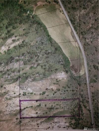 Chelan, Chelan Falls, Entiat, Manson, Brewster, Bridgeport, Orondo Residential Lots & Land For Sale: Navarre Coulee Road (40421)