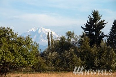 Enumclaw Residential Lots & Land For Sale: 372 Xx 236th Ave SE