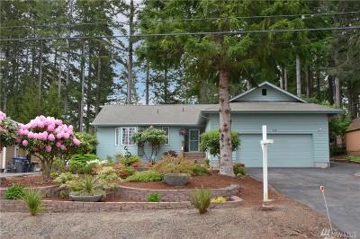 Mason County Single Family Home For Sale: 250 E Penzance Rd