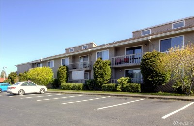 Bellingham Condo/Townhouse Sold: 1251 Nevada St #11