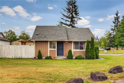 Olympia Single Family Home For Sale: 724 Edelweiss Lane SE
