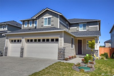 Thurston County Single Family Home For Sale: 8424 23rd Ave SE