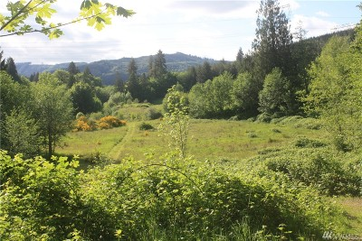 Residential Lots & Land For Sale: 241 Horsley