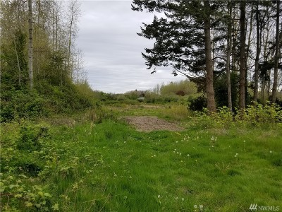 Point Roberts Residential Lots & Land For Sale: Peltier Dr E