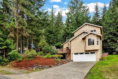 Bellingham Single Family Home For Sale: 21 Louise View Dr