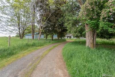Napavine Single Family Home For Sale: 1453 Hwy 603
