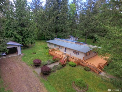 Rochester WA Single Family Home For Sale: $300,000