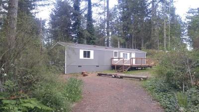 Mason County Single Family Home Pending: 40 E Dunvegan Rd