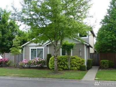 Olympia Single Family Home For Sale: 8135 Trimble Lane SE
