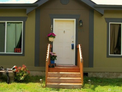 Mason County Single Family Home For Sale: 191 E Ritz Dr