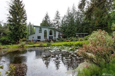 Deming Single Family Home For Sale: 5446 Mt Baker Hwy