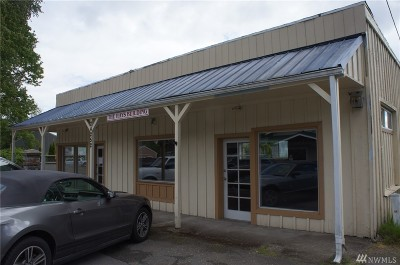 Mason County Commercial For Sale: 24252 N Hwy 101