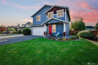 Stanwood Single Family Home For Sale: 27800 69th Ave NW