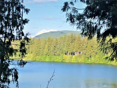 Thurston County Single Family Home For Sale: 21917 SE 184th Ct