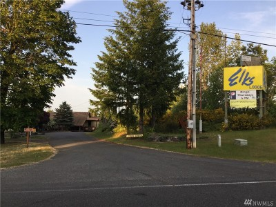 Shelton Commercial For Sale: 741 SE Craig Rd