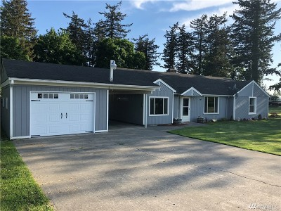 Lynden Single Family Home For Sale: 295 Ten Mile Rd