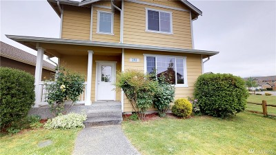 Sedro Woolley Single Family Home For Sale: 293 Klinger St