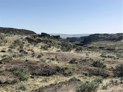 Residential Lots & Land For Sale: 1195 Tumbleweed Way