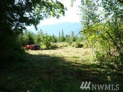 Residential Lots & Land For Sale: 31408 555th St Ct E