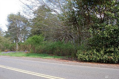 Residential Lots & Land For Sale: 8 Copalis Beach Rd