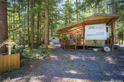 Sumas Single Family Home For Sale: 1179 Exit Rd