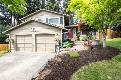 Pierce County Single Family Home For Sale: 19005 64th St E