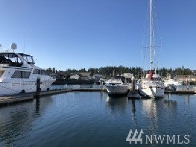 Anacortes Condo/Townhouse For Sale: 2011 Skyline Wy #TDN38