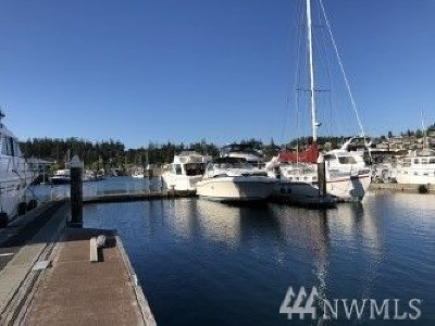 Anacortes Condo/Townhouse For Sale: 2011 Skyline Wy #TDN39