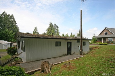 Mason County Single Family Home For Sale: 110 E Cedar St