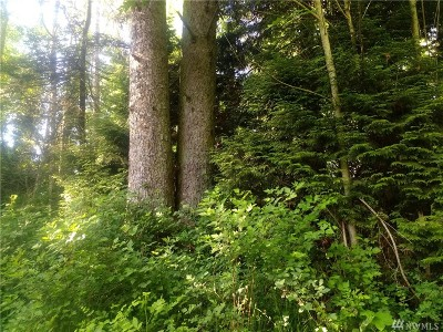 Whatcom County Residential Lots & Land For Sale: 4052 Semiahmoo Dr