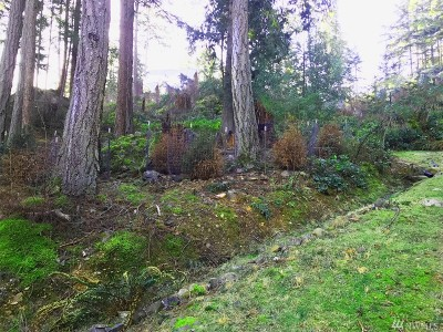 Lummi Island Residential Lots & Land For Sale: 1146 Clark Cir