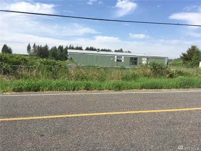 Whatcom County Farm For Sale: 3382 Breckenridge Rd