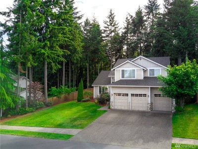 Gig Harbor Single Family Home For Sale: 4212 19th Ave NW