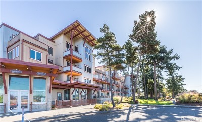 Blaine Condo/Townhouse For Sale: 7714 Birch Bay Dr. #401