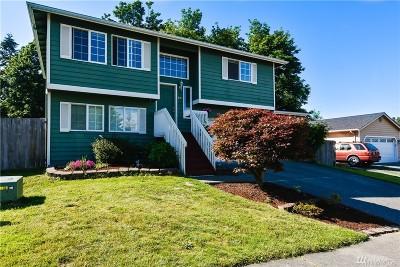 Lake Stevens Single Family Home For Sale: 824 97th Ave NE