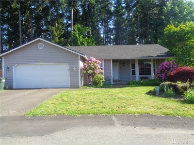 Pierce County Single Family Home For Sale: 305 Maple Dr