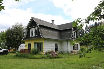 Centralia Single Family Home For Sale: 3010 Lowery Lane