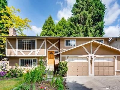 Kirkland Single Family Home For Sale: 12910 NE 136th Place
